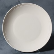Rimmed Diner Plate stoneware bisque