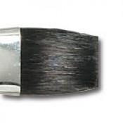 "3/4"" Flat Translucent brush"