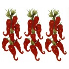 K-Ceramics decal 5659 - Red Chili Peppers