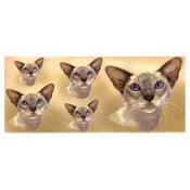 Cat Decal, Select Breed - Mug Wrap