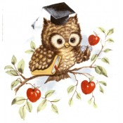 Virma decal 1038 - Academic Owl
