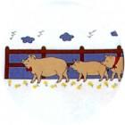 Virma decal 1434P - Pigs by fence mug wrap
