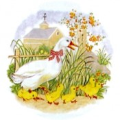 Virma decal 1438 - Duck with ducklings