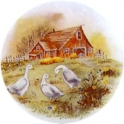 Virma decal 1440 - Ducks/Geese in farmyard