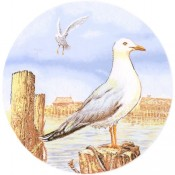 Virma decal 1352 - Seagull on Pier