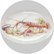 Virma decal 1886 - Lobster set