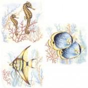 Virma decal 3222 - Seashorse and angel fish