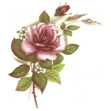 Virma 1006-M Mauve Rose Decal
