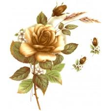Virma 1006-C Caramel Color Rose Decal