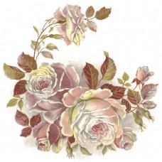Virma 1070 Mauve/Pink Roses Decal