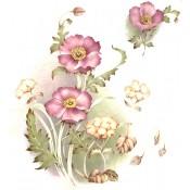 Virma decal 1088-Purple/Pink Flowers