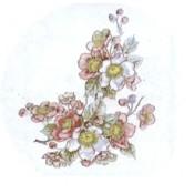 Virma decal 1232- Pink/Blue Flowers