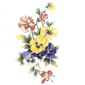 Virma decal 2292 - Flowers 2