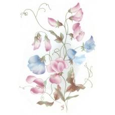 Virma 1002 Sweet Peas flowers Decal