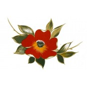 Virma decal 2326 - Orange Poppy
