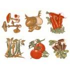 Virma decal 1222- Vegetable decals