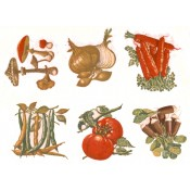 Virma decal 1222- Vegetable decals
