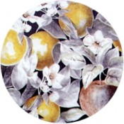 Virma decal 1764-Apples cover all