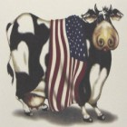 Virma decal AM05-Cow with American Flag