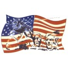 Virma decal AM09-National Mounument on American Flag