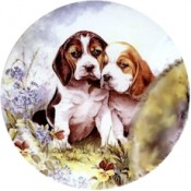 Virma decal 1908-Puppy Set