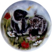 Virma decal 2014 - Kittens Size A & B