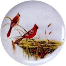 Virma 1248 Cardinals in Seasons Decal