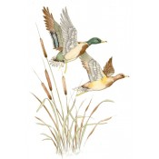 Virma decal 1398-Flying Mallards