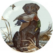 Zembillas decal 0800 - Black Labrador and Mallard