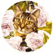 Zembillas decal 0904 - Cats in Wildlife Setting