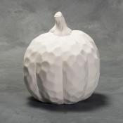 Medium Fluted Pumpkin