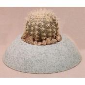 Small Cactus Planter Mold