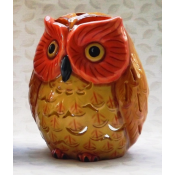 Owl Mold