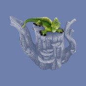 Paint Me Lizard Mold