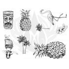 Island Designer Silkscreen