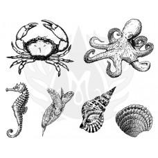 Mayco DSS-0148 Sea Life 3 XL Designer Silkscreen